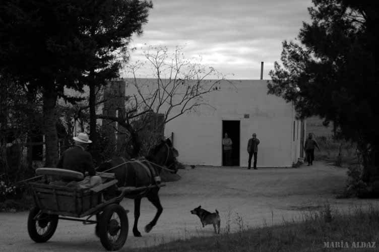 Boliches de campaña - María Mercedes Aldaz, Fotografía