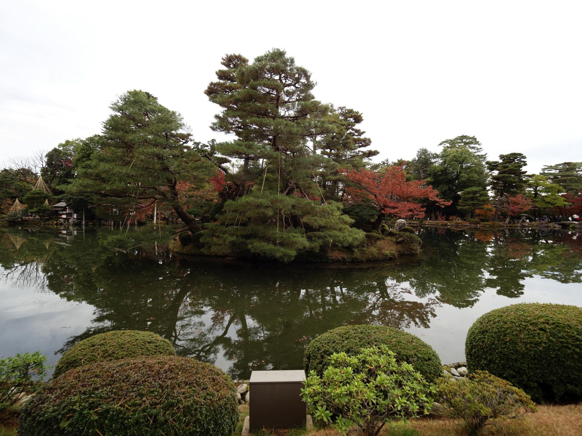 JAPÓ - COLORS DE TARDOR - agusti lopez rodriguez i agusti meseguer altes, Fotografía entorn natural