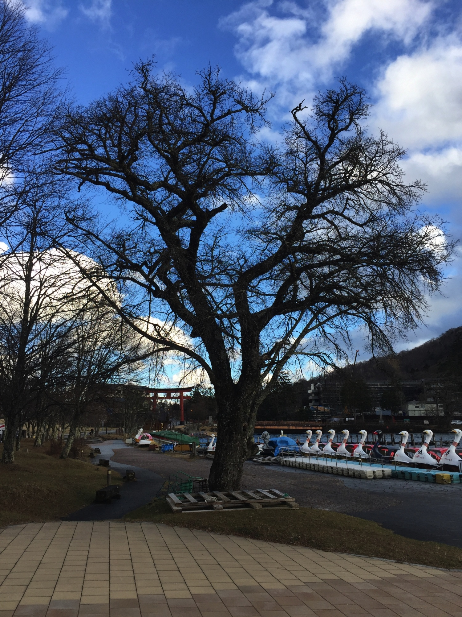LAGO CHUZENJI – NIKKO – JAPÓ - JAPÓ - COLORS DE TARDOR - agusti lopez rodriguez i agusti meseguer altes, Fotografía entorn natural