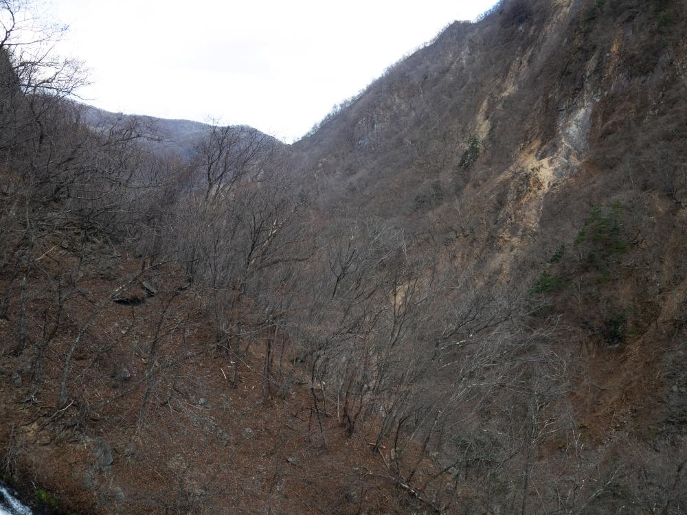 CATARATAS KEGON – NIKKO - JAPÓ - JAPÓ - COLORS DE TARDOR - agusti lopez rodriguez i agusti meseguer altes, Fotografía entorn natural