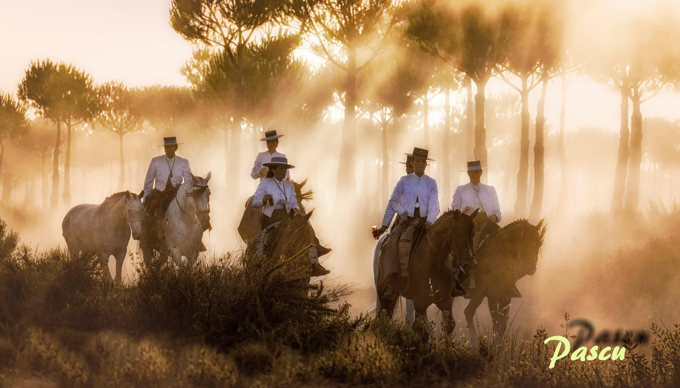 Huelva en la Matilla - ACCOF la Luz, Asociación Cultural Club Onubense de Fotografía la Luz