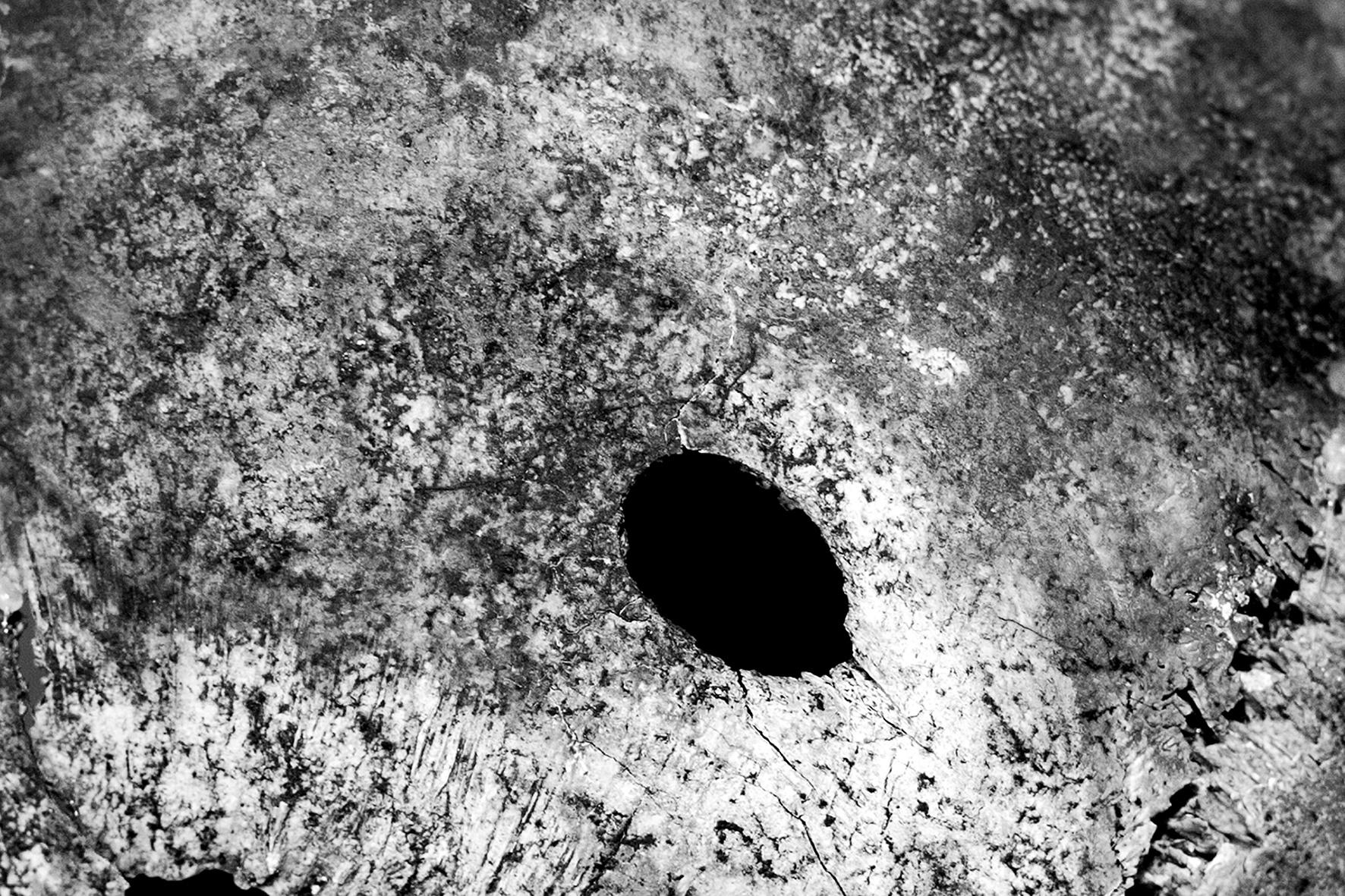 Cráneo perforado III, 2018 - Niebla (2018) - Ana Frechilla, proyecto fotográfico