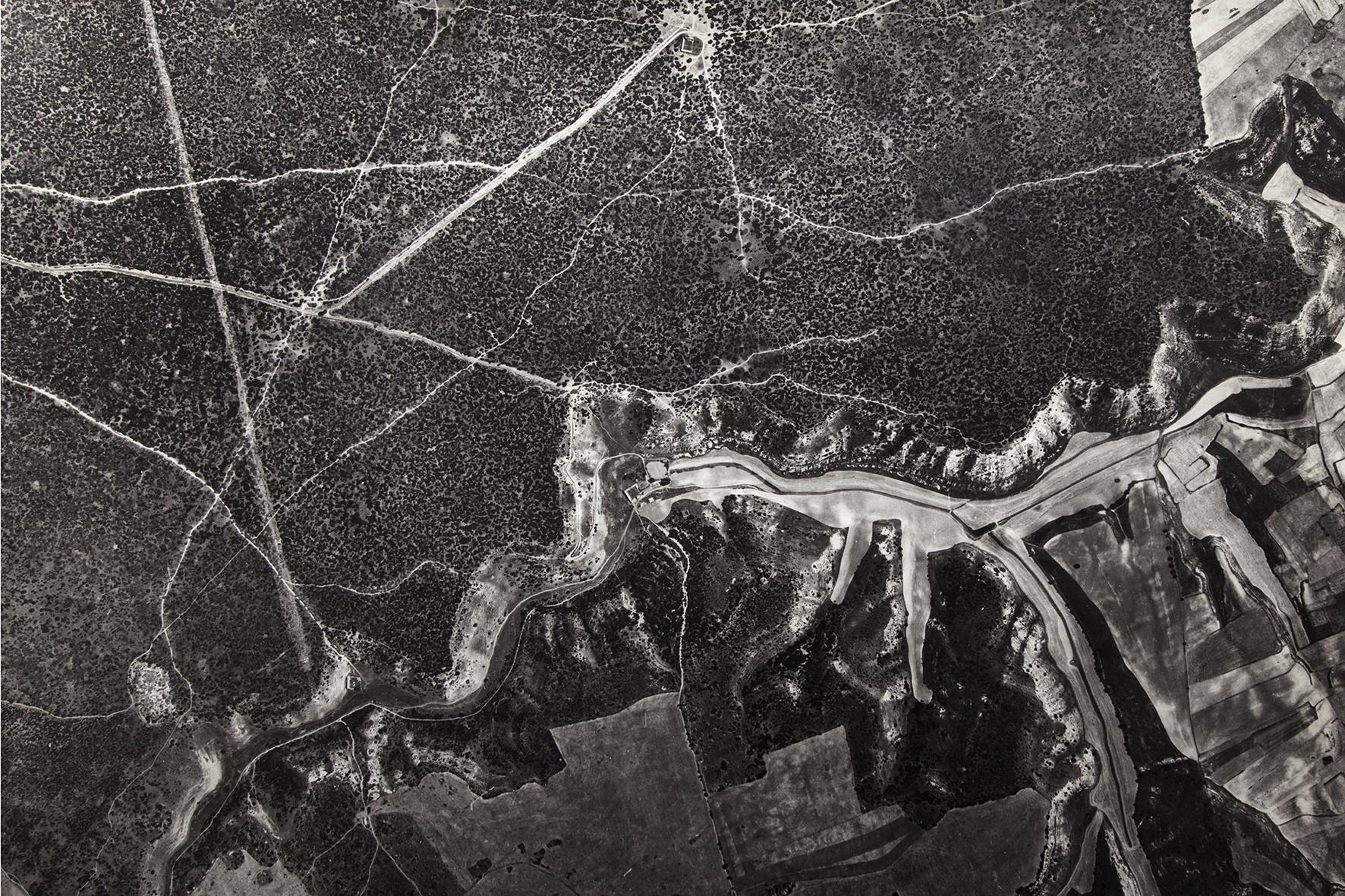 Caminos del Monte el Viejo, 1949 - Niebla (2018) - Ana Frechilla, proyecto fotográfico