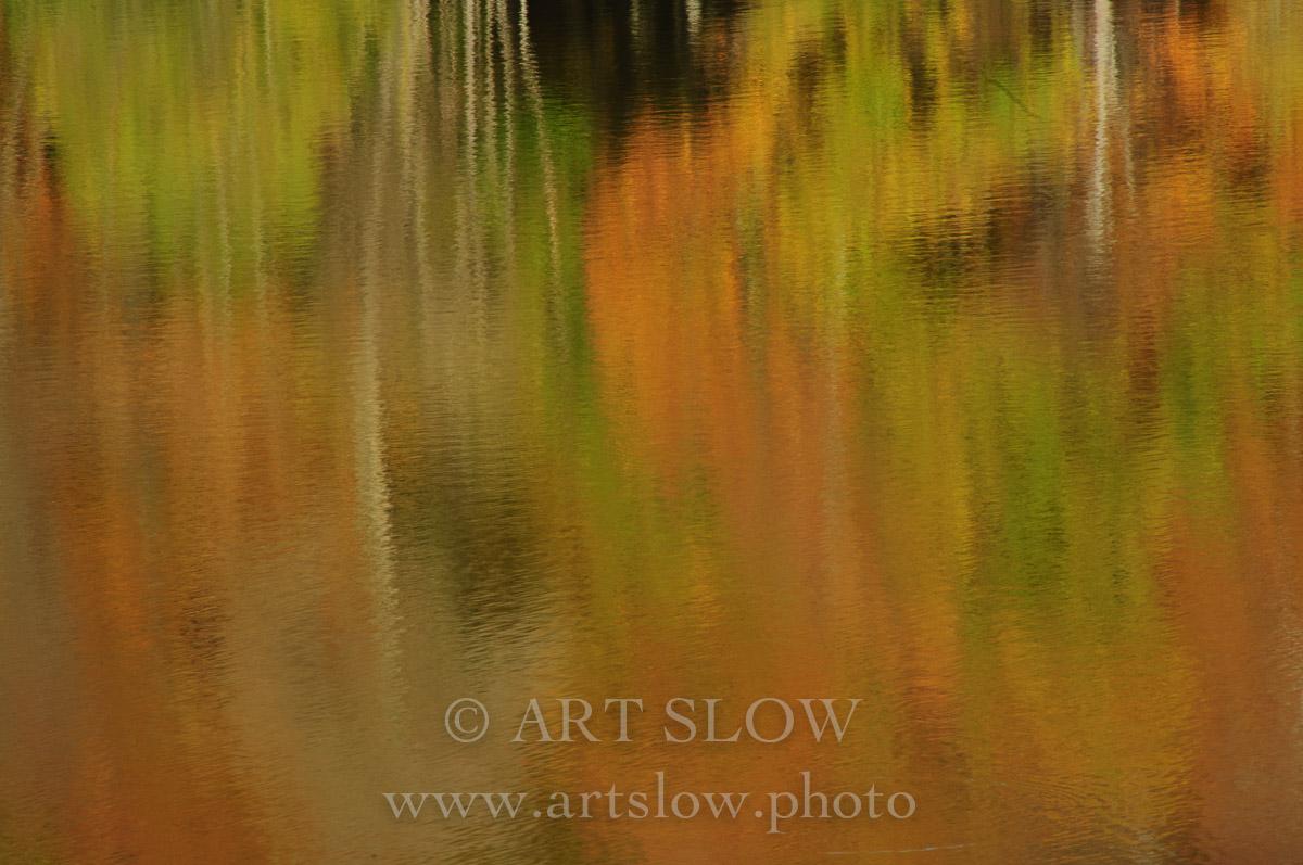Alto en el Detalle – Santa Fe, Parque Natural del Montseny, Catalunya. Edición: 10/10 + 2P/A - Agua es vida - Agua