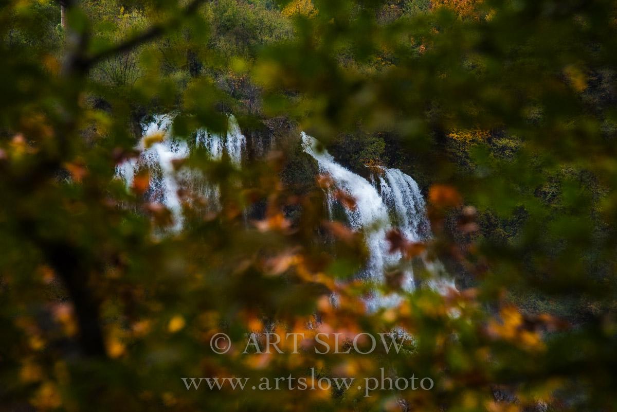 Mirada entre Hojas - Parque Nacional de los Lagos de Plivitce, Croacia. Edición: 10/10 + 2P/A - Agua es vida - Agua