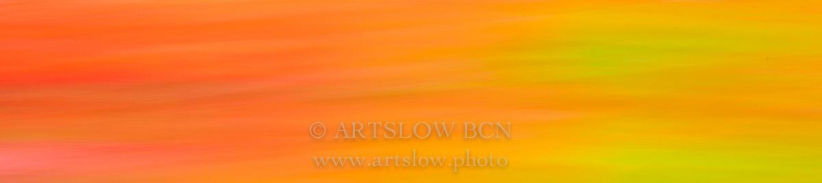 Bcn rosas bicolores; ref: 1604-0324 - Bcn rosas bicolores - Foulard rosas bicolores