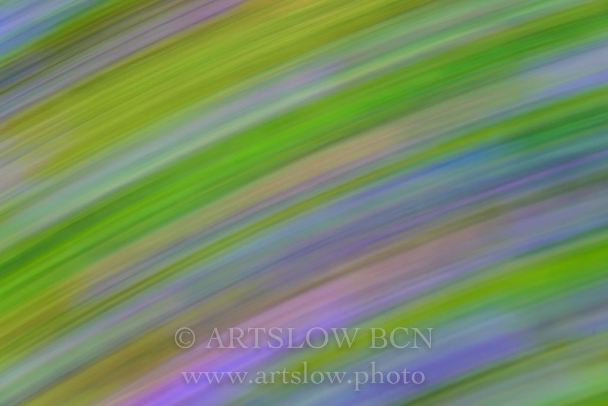 1703-5678 - 2017 - ARTSLOW BCN GALLERY SHOP, www.artslow.photo