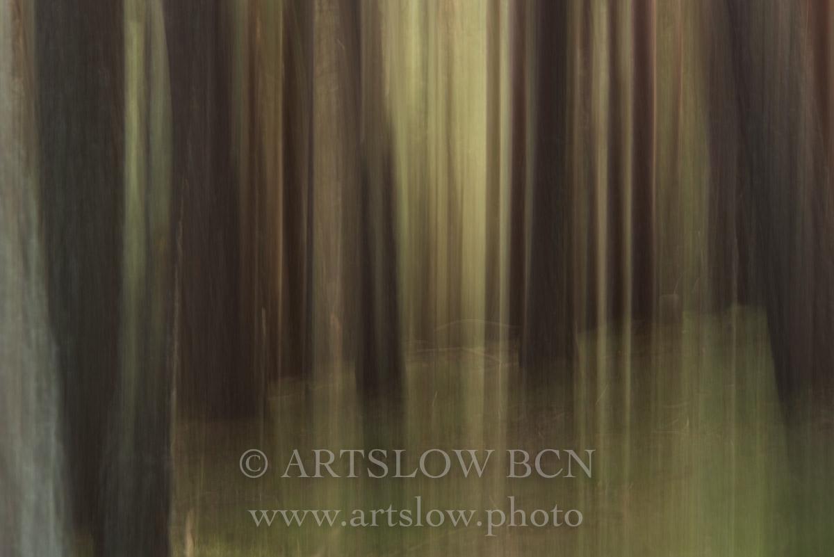 1708-4074 - 2017 - ARTSLOW BCN GALLERY SHOP, www.artslow.photo