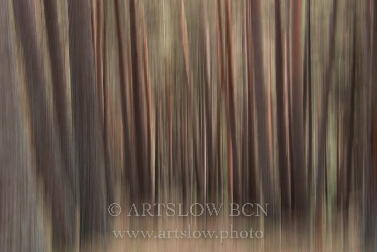 1708-4132 - 2017 - ARTSLOW BCN GALLERY SHOP, www.artslow.photo