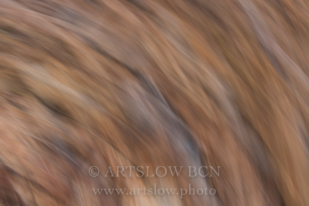 1708-3879 - 2017 - ARTSLOW BCN GALLERY SHOP, www.artslow.photo