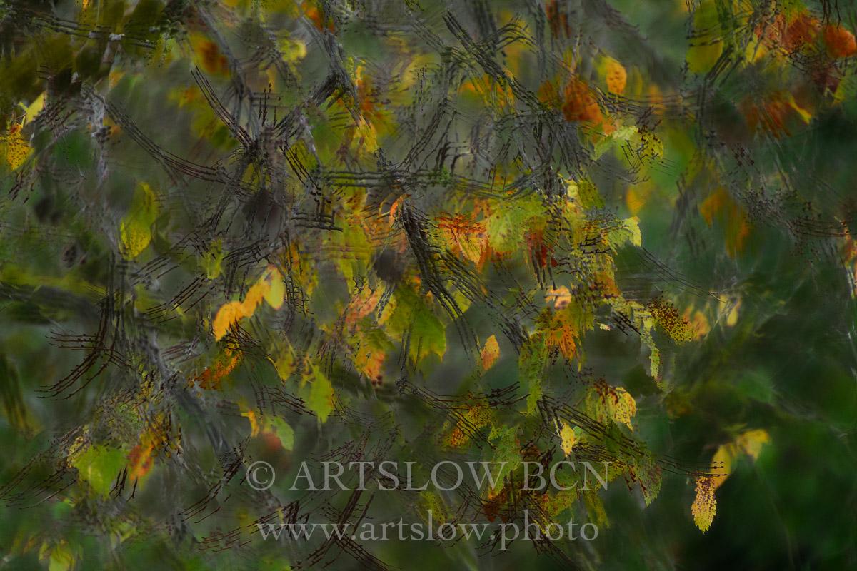 1810-0190 - 2018 - ARTSLOW BCN GALLERY SHOP, www.artslow.photo