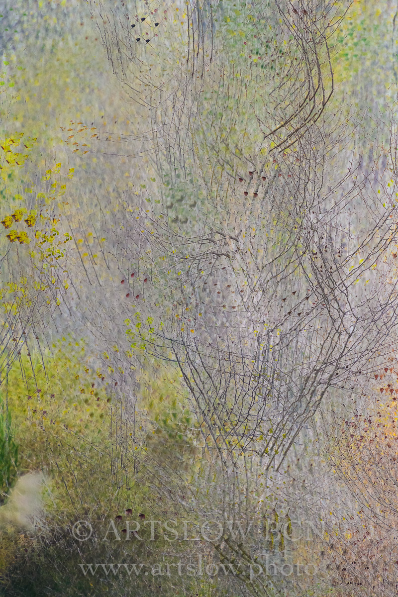 1812-3312 - 2018 - ARTSLOW BCN GALLERY SHOP, www.artslow.photo
