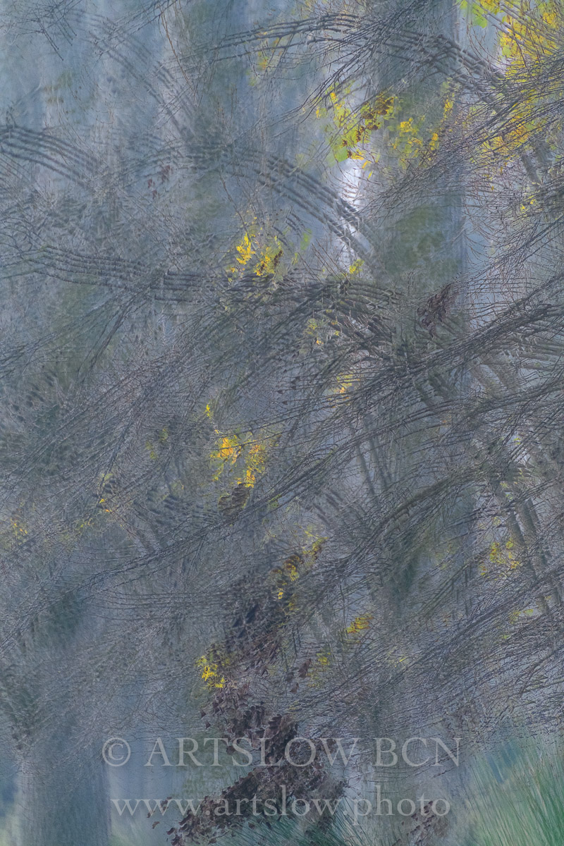 1812-3347 - 2018 - ARTSLOW BCN GALLERY SHOP, www.artslow.photo
