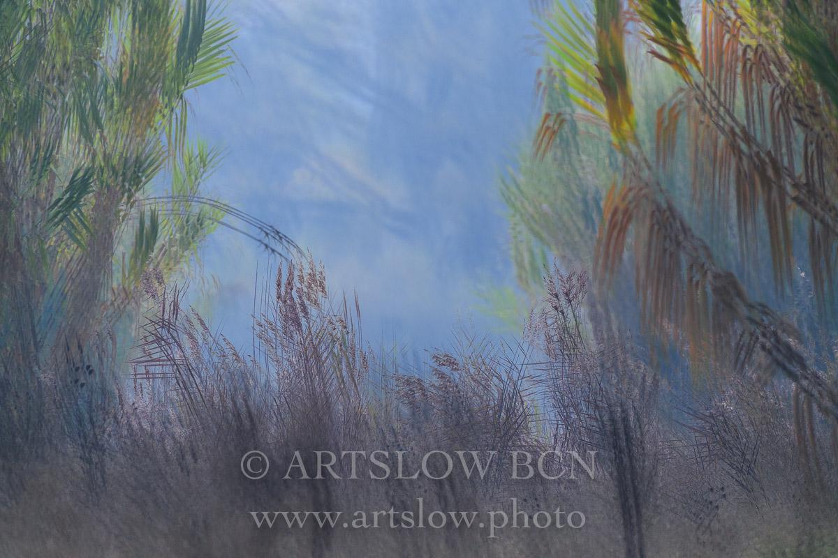 1812-3351 - 2018 - ARTSLOW BCN GALLERY SHOP, www.artslow.photo