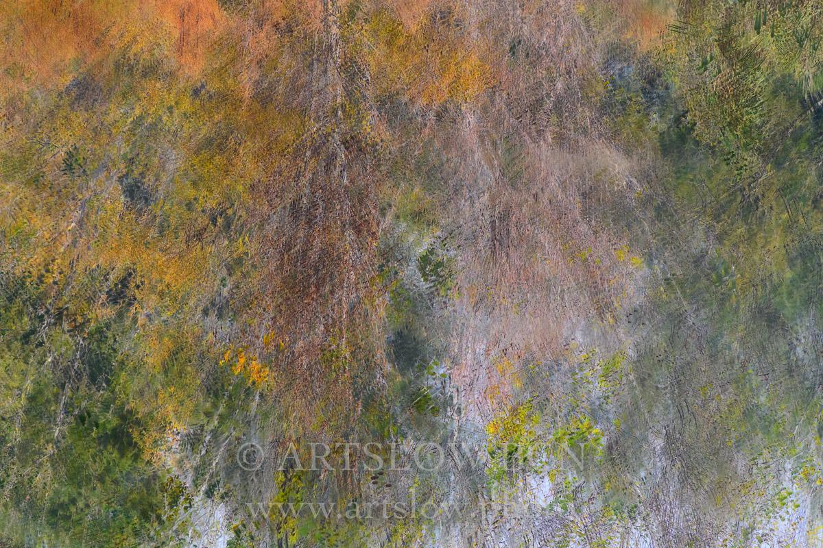 1812-3370 - 2018 - ARTSLOW BCN GALLERY SHOP, www.artslow.photo
