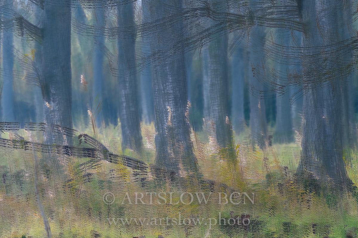 1812-3381 - 2018 - ARTSLOW BCN GALLERY SHOP, www.artslow.photo