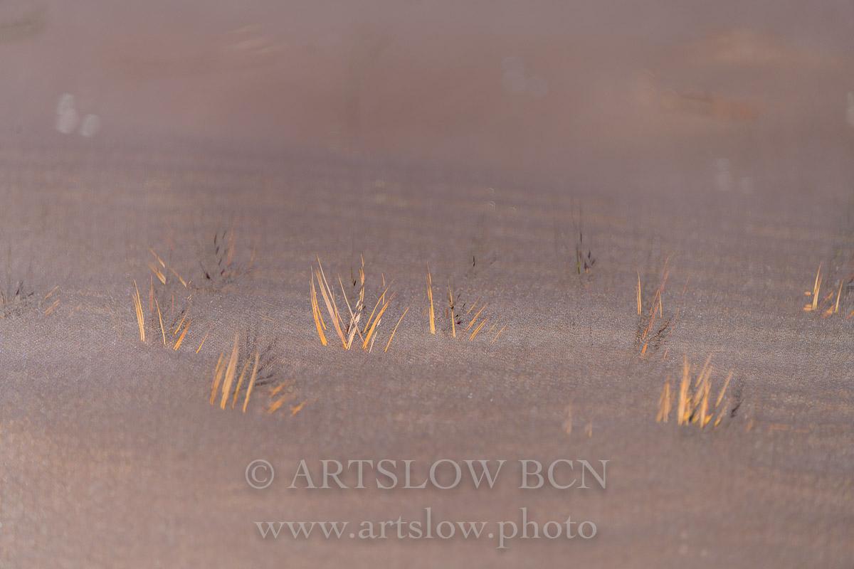 1901-5675 - 2019 - ARTSLOW BCN GALLERY SHOP, www.artslow.photo