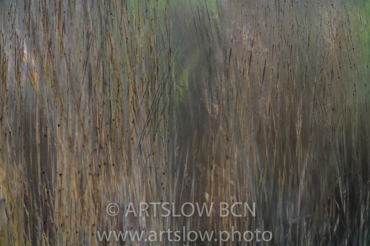 1903-0156 - 2019 - ARTSLOW BCN GALLERY SHOP, www.artslow.photo
