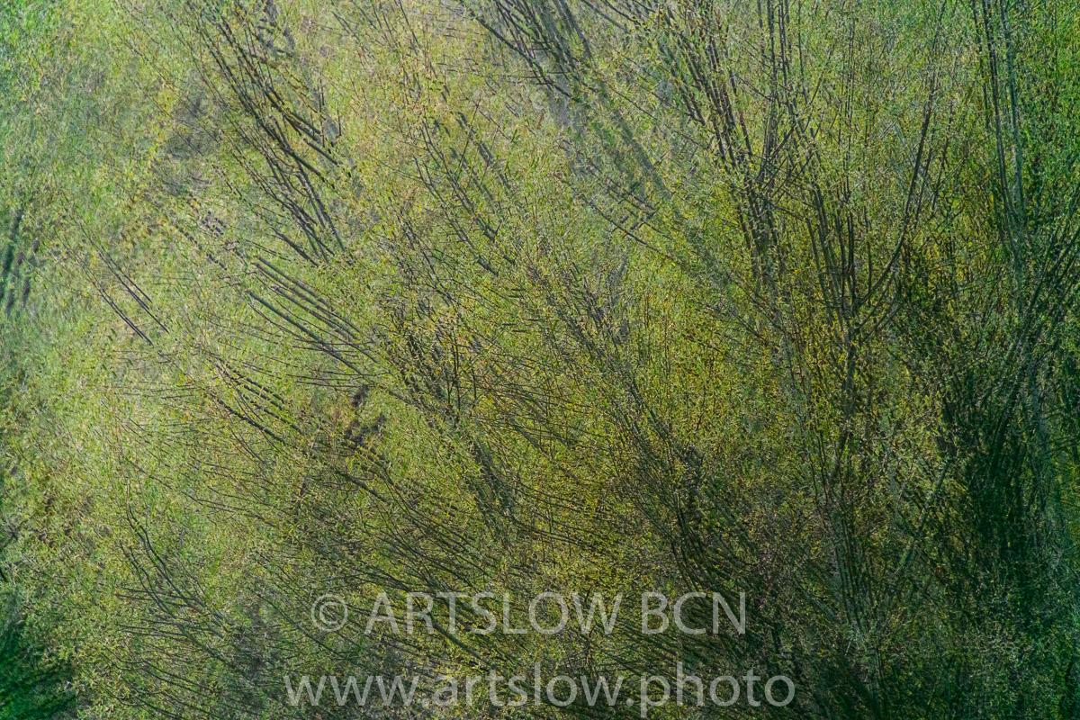 1911-3046 - 2019 - ARTSLOW BCN GALLERY SHOP, www.artslow.photo