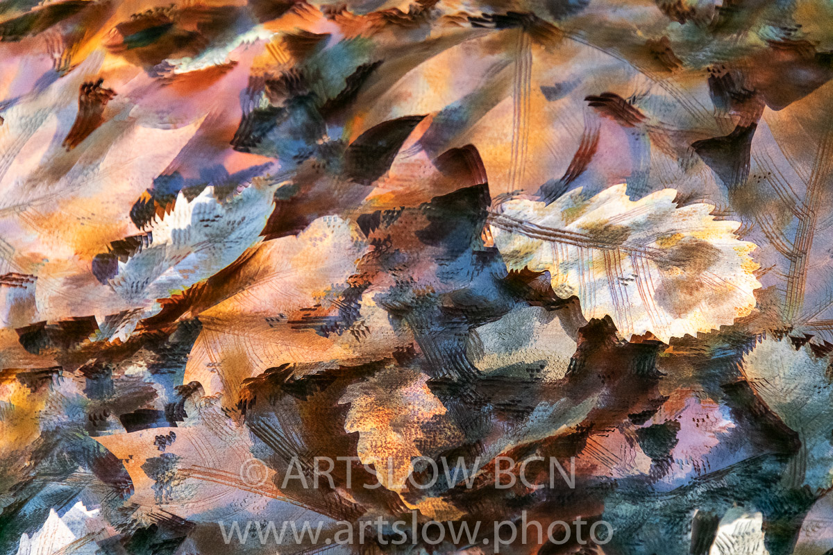 1912--4755 - 2019 - ARTSLOW BCN GALLERY SHOP, www.artslow.photo