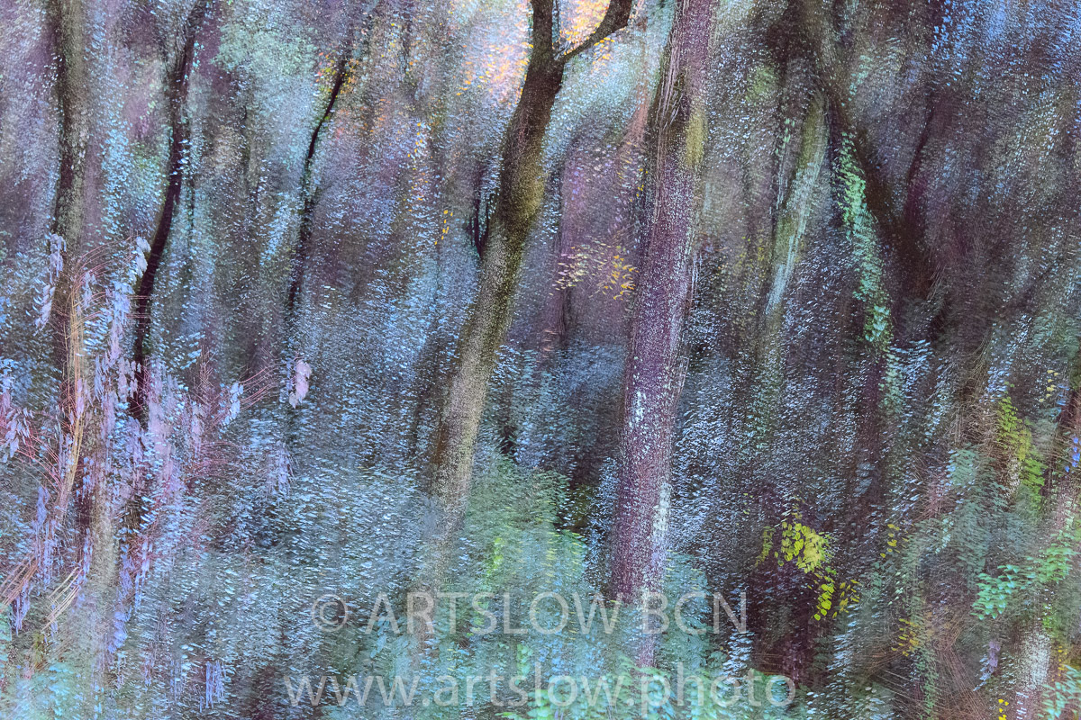 1912-4783 - 2019 - ARTSLOW BCN GALLERY SHOP, www.artslow.photo