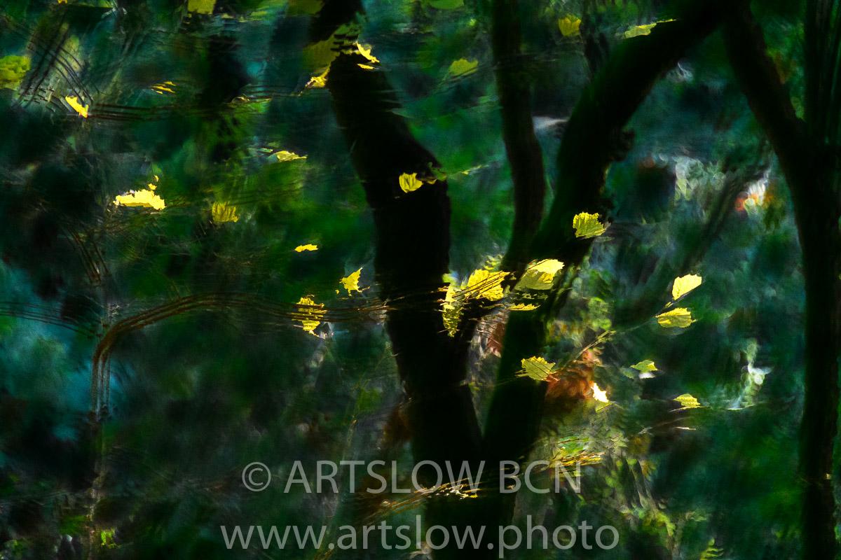 1912-4799 - 2019 - ARTSLOW BCN GALLERY SHOP, www.artslow.photo