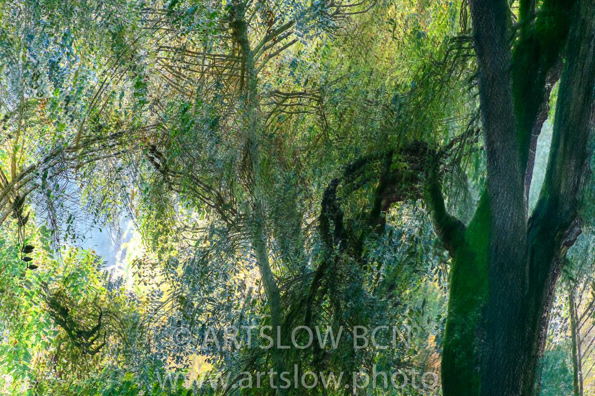 1912-4839 - 2019 - ARTSLOW BCN GALLERY SHOP, www.artslow.photo