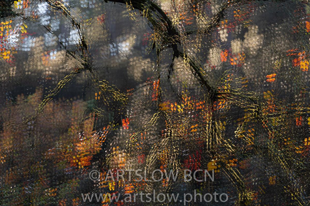 1912-4888 - 2019 - ARTSLOW BCN GALLERY SHOP, www.artslow.photo