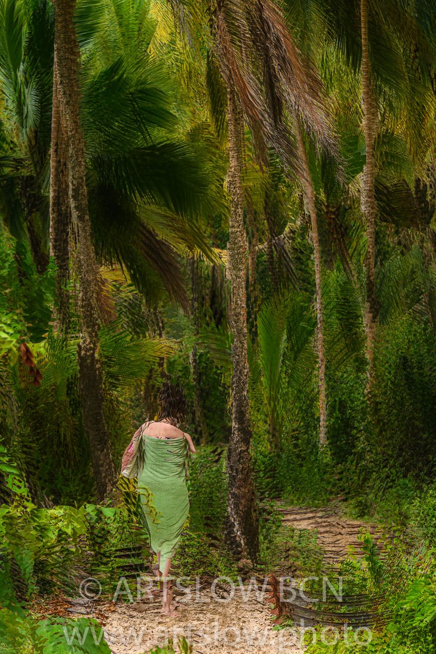 2002-9270-Musa entre Cocoteros, Bocas del Toro,Isla de Colón, Panamá - Paisajes Tropicales - ARTSLOW BCN GALLERY SHOP, www.artslow.photo