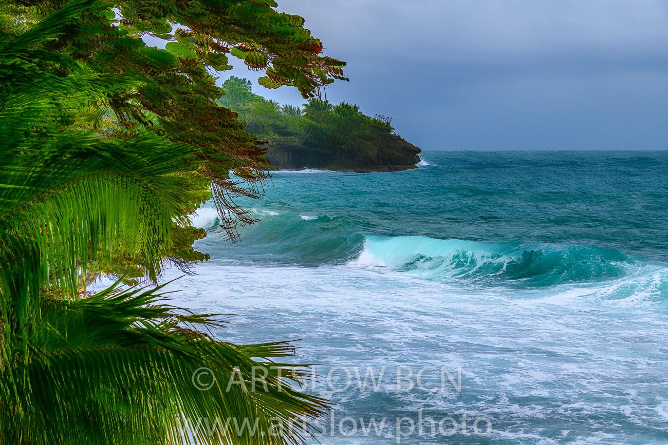 2002-9394-Natura Tropical e Imaginación 3, Bocas del Toro,Isla de Colón, Panamá - Paisajes Tropicales - ARTSLOW BCN GALLERY SHOP, www.artslow.photo