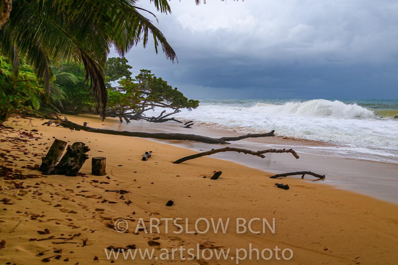 2002-9410-Natura Tropical e Imaginación 5, Bocas del Toro,Isla de Colón, Panamá - Paisajes Tropicales - ARTSLOW BCN GALLERY SHOP, www.artslow.photo