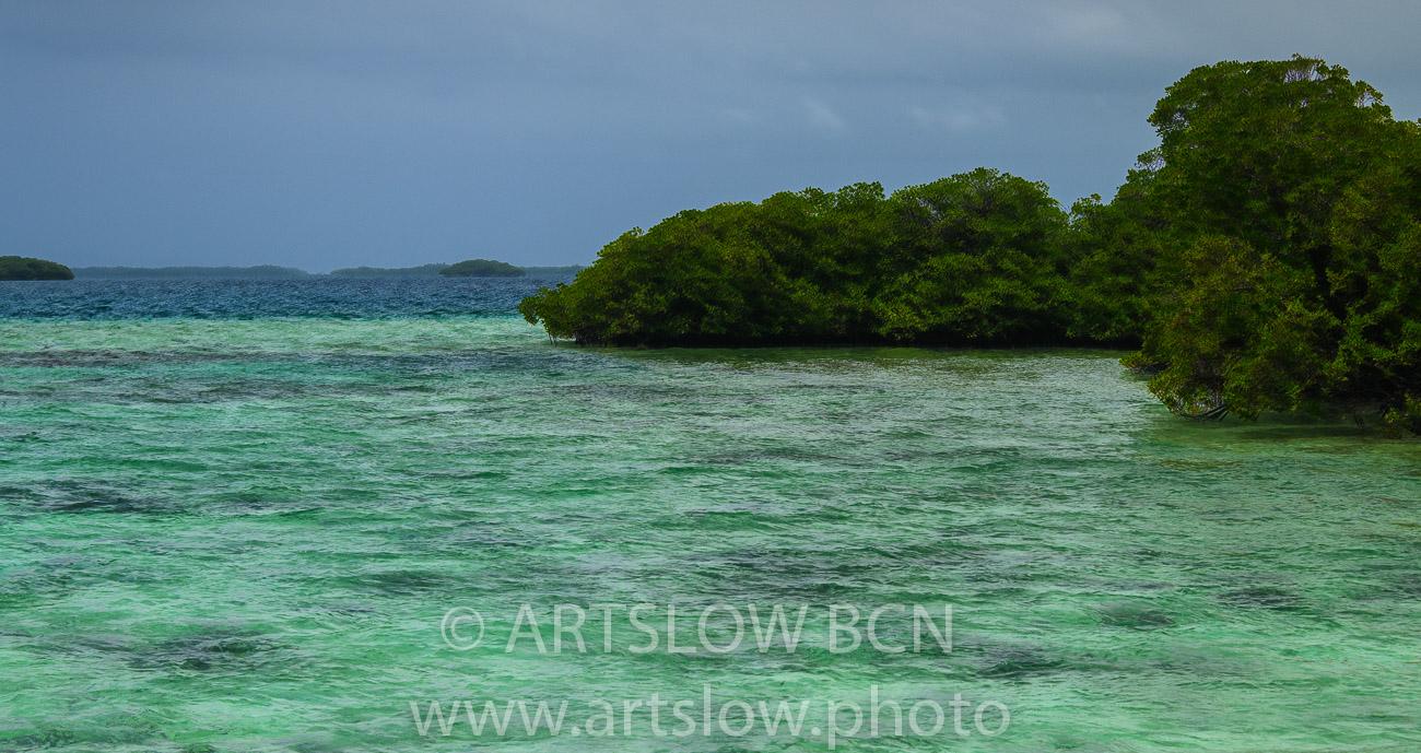 2002-9467, Coral Key, Manglar, Bocas del Toro,Isla de Colón, Panamá - Paisajes Tropicales - ARTSLOW BCN GALLERY SHOP, www.artslow.photo
