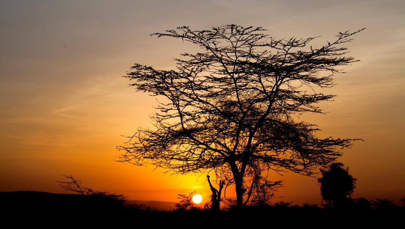 Kenya Masai Mara - Augusto Rodríguez, Landscape & Portrait