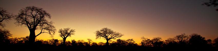 Ribera del río Zambeze a su paso por Tete  -  Norte de Mozambique paisajes - Augusto Rodríguez, Landscape & Portrait