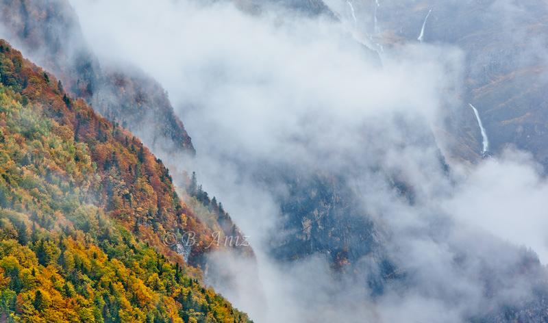 Valle de Pineta entre la magia de la niebla... - Otoño en el Pirineo - Bakartxo Aniz Aldasoro, Fotografía de naturaleza, etnografía y viajes