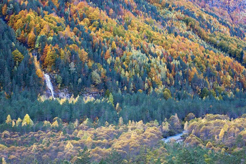 Valle de Pineta. - Otoño en el Pirineo - Bakartxo Aniz Aldasoro, Fotografía de naturaleza, etnografía y viajes