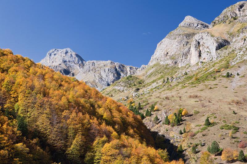 Valle de Ordiso - Bujaruelo - Otoño en el Pirineo - Bakartxo Aniz Aldasoro, Fotografía de naturaleza, etnografía y viajes