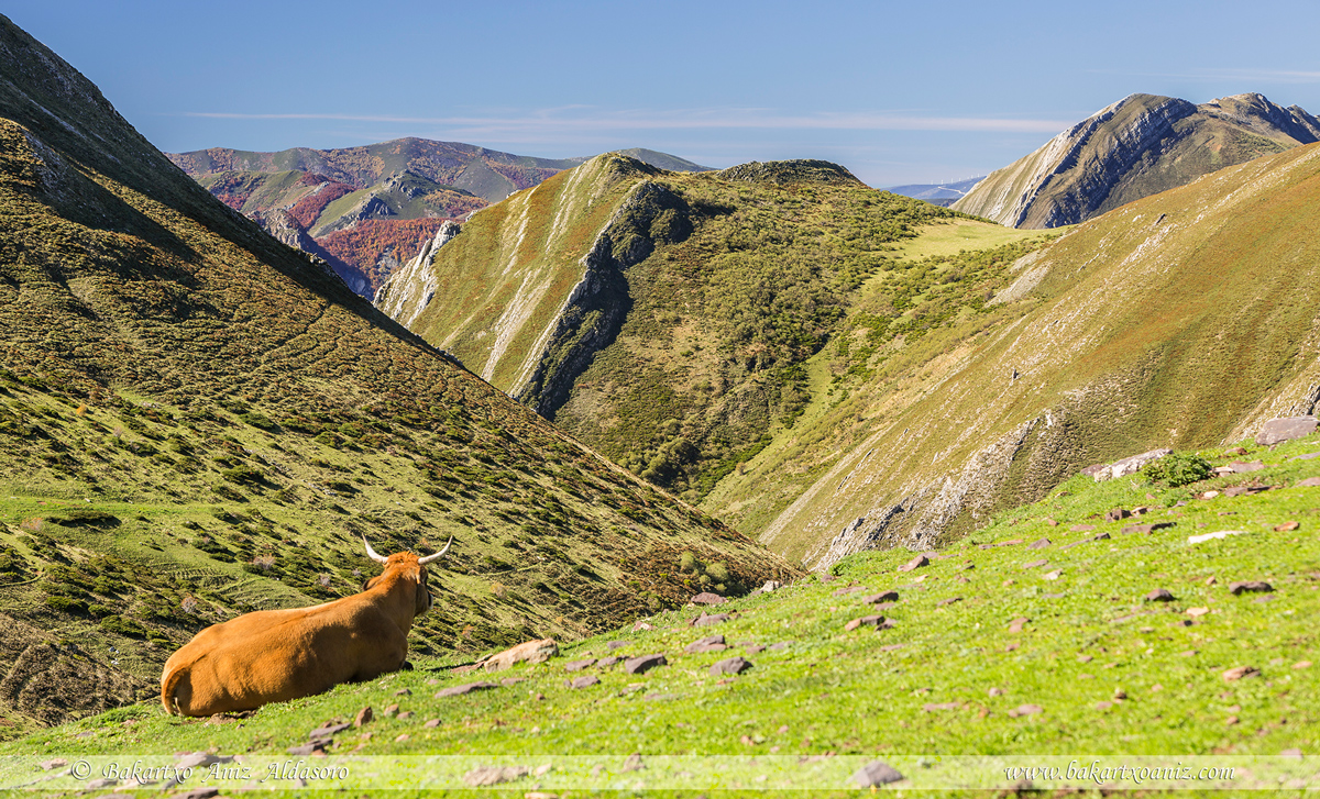 Desde la Mesa hacia valle de Saliencia - Somiedo - Somiedo - Tierra de teitos y bosques - Bakartxo Aniz - Fotografías de Asturias. Somiedo - Muniellos.