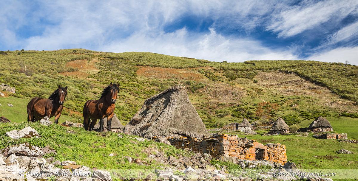 Braña de Murias - Somiedo - Somiedo - Tierra de teitos y bosques - Bakartxo Aniz - Fotografías de Asturias. Somiedo - Muniellos.