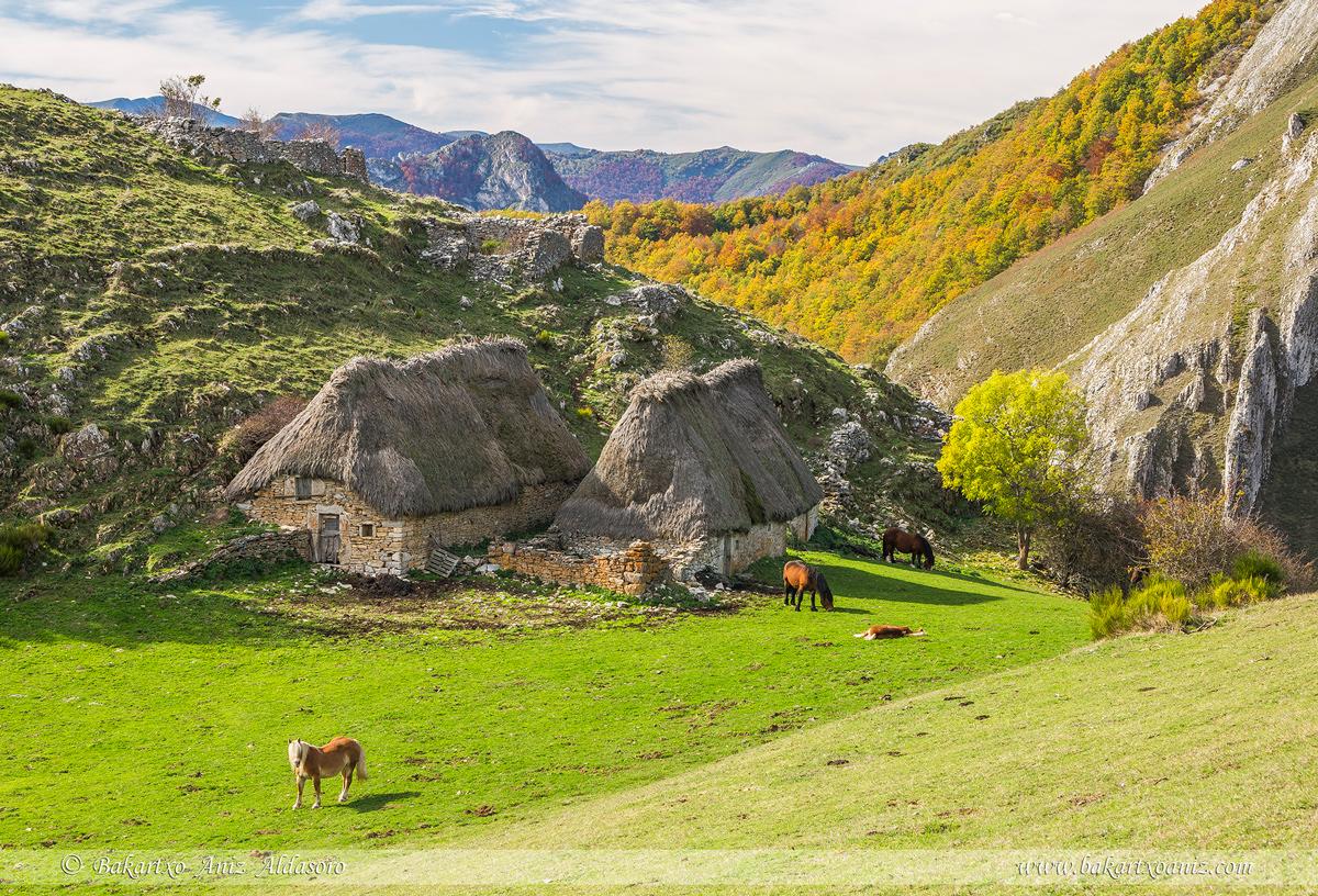 Ordiales de Arbellales - Somiedo - Somiedo - Tierra de teitos y bosques - Bakartxo Aniz - Fotografías de Asturias. Somiedo - Muniellos.