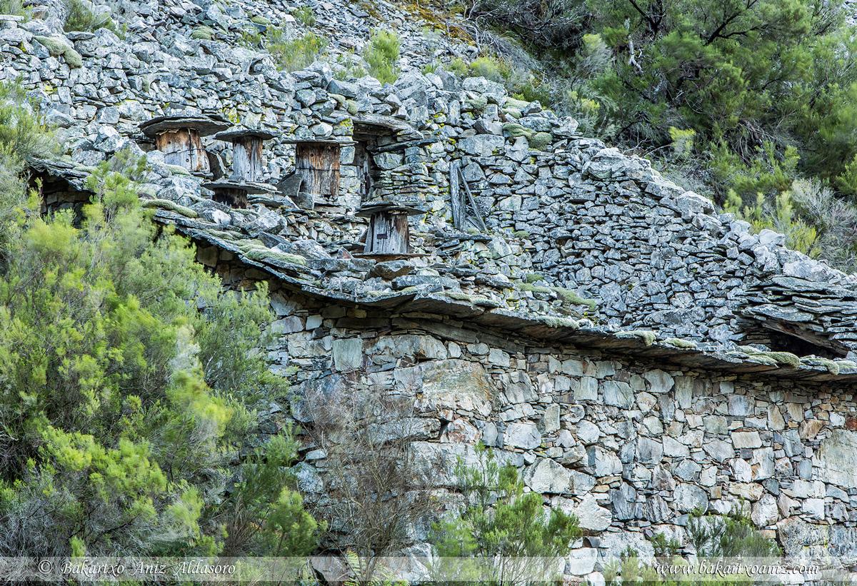 Detalle de cortín de abejas  - Concejo Cangas de Narcea - Somiedo - Tierra de teitos y bosques - Bakartxo Aniz - Fotografías de Asturias. Somiedo - Muniellos.