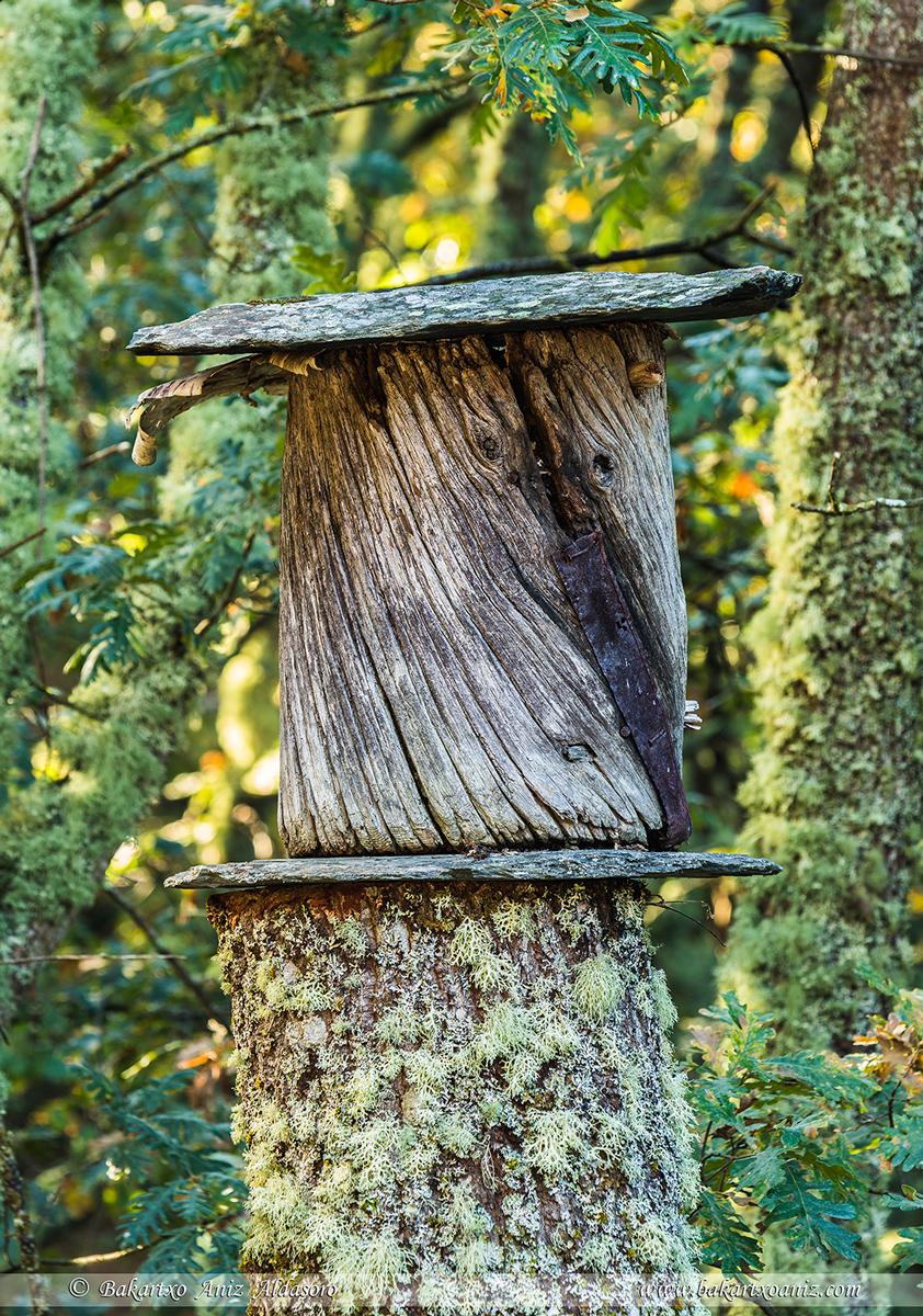 Truebano tradicional para las abejas - Somiedo - Tierra de teitos y bosques - Bakartxo Aniz - Fotografías de Asturias. Somiedo - Muniellos.