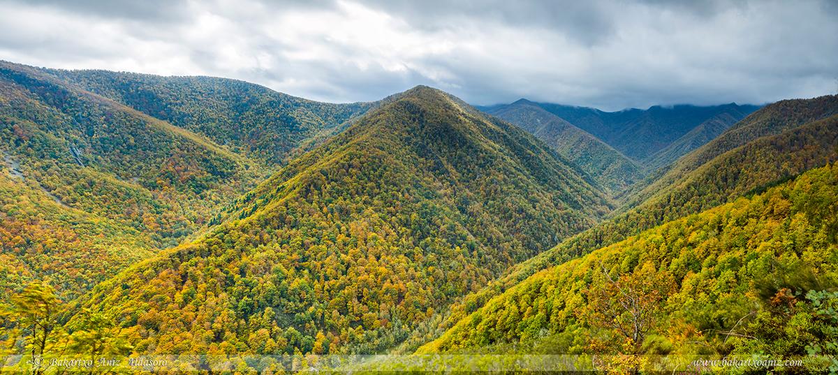Bosque de Muniellos - Reserva Natural Integral - Somiedo - Tierra de teitos y bosques - Bakartxo Aniz - Fotografías de Asturias. Somiedo - Muniellos.