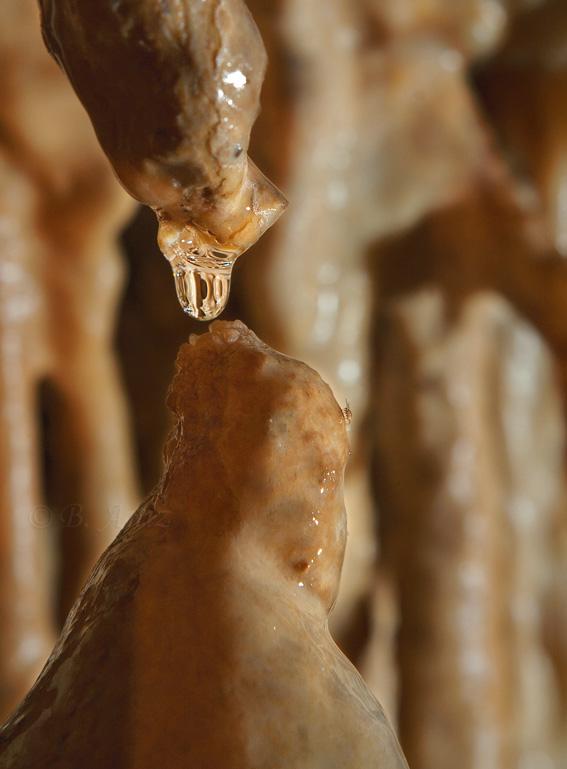 Cueva de Mendukilo - Bakartxo Aniz Aldasoro, Fotografía de naturaleza, etnografía y viajes