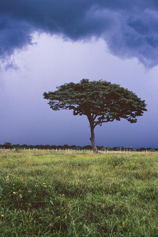 Tormenta en Los Llanos - Venezuela - Paisaje - Bakartxo Aniz - Fotografías de paisajes en Pirineos, Suiza y Venezuela.