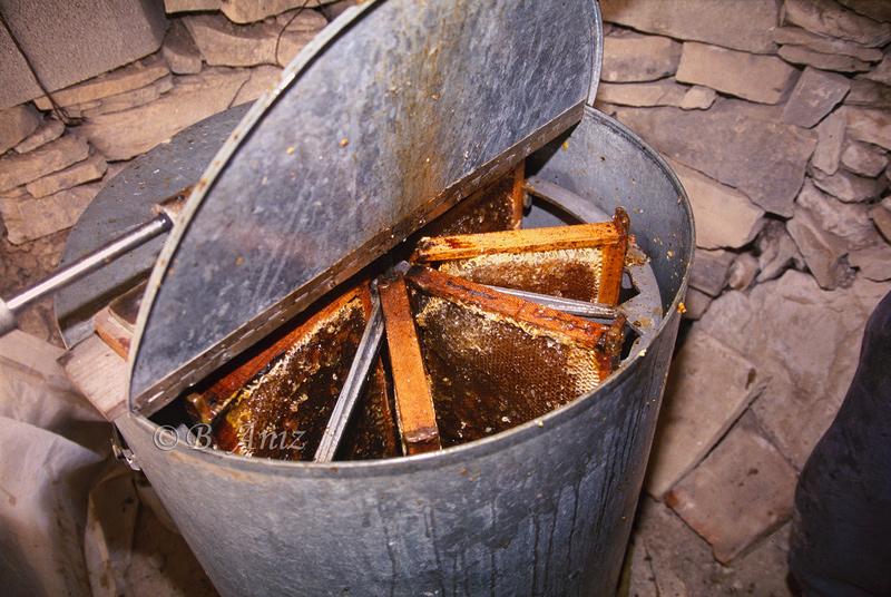 Centrifugadora para la extracción de la miel - Extrayendo la miel - Bakartxo Aniz - Fotografías de Apicultura.