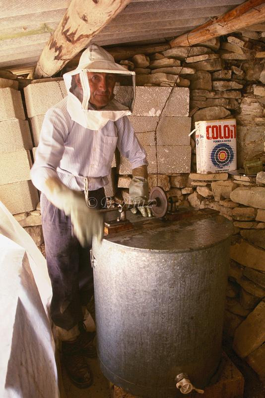 Centrifugando - Extrayendo la miel - Bakartxo Aniz - Fotografías de Apicultura.