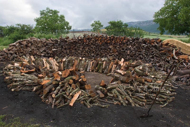 Preparando la base para armar la carbonera - Oficio de carbonero - Bakartxo Aniz - Fotografías sobre el oficio de Carbonero - Valle de Lana.