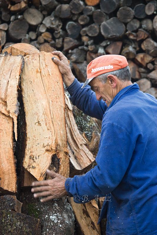 Armando la carbonera - Oficio de carbonero - Bakartxo Aniz - Fotografías sobre el oficio de Carbonero - Valle de Lana.