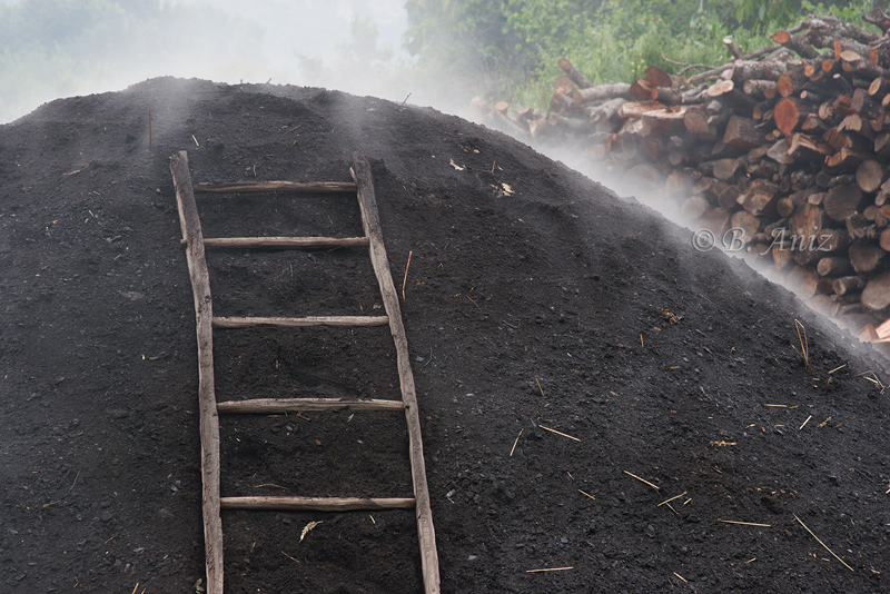 Oficio de carbonero - Bakartxo Aniz - Fotografías sobre el oficio de Carbonero - Valle de Lana.